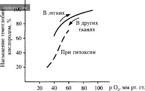 Гематология: Перенос кислорода в крови