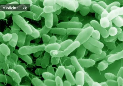 Микробиология и вирусология: Сборник: лекции по микробиологии