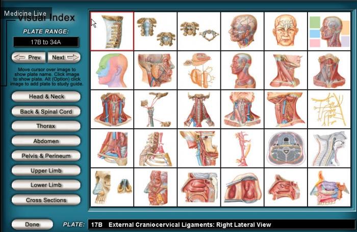 Медицинские программы: Интерактивный атлас анатомии Неттера